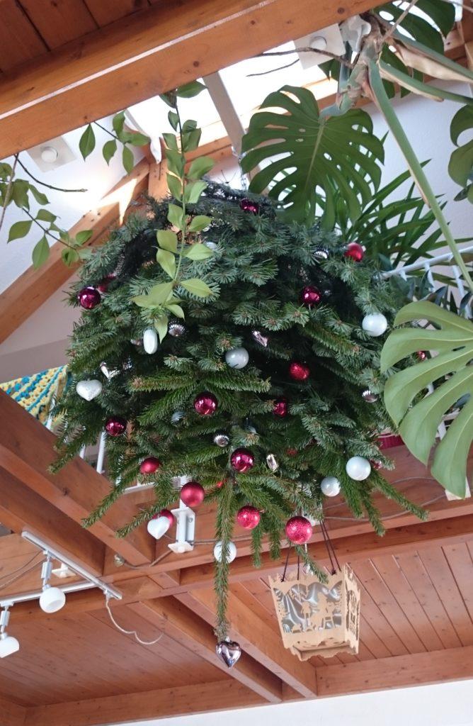Weihnachtsbaum bei Tag