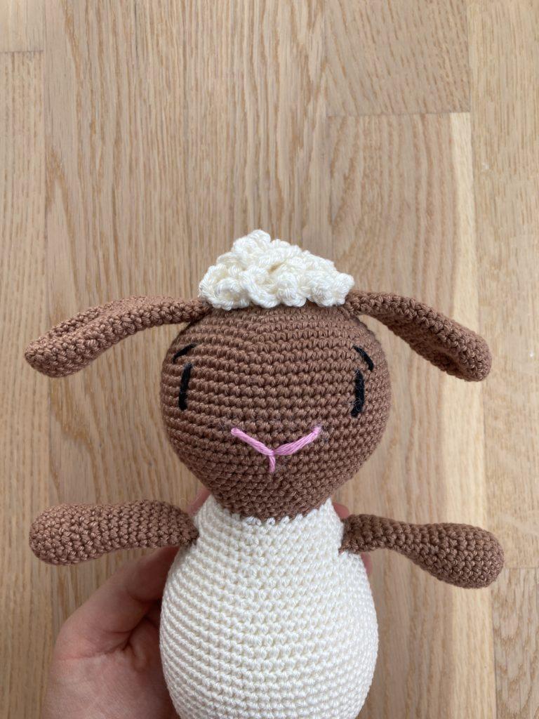 Schaf von vorn